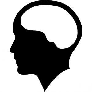 Brain Možgani